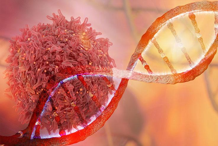 la difference entre une tumeur et un cancer